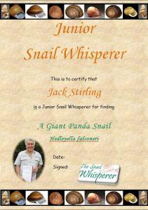 JSW Certificate